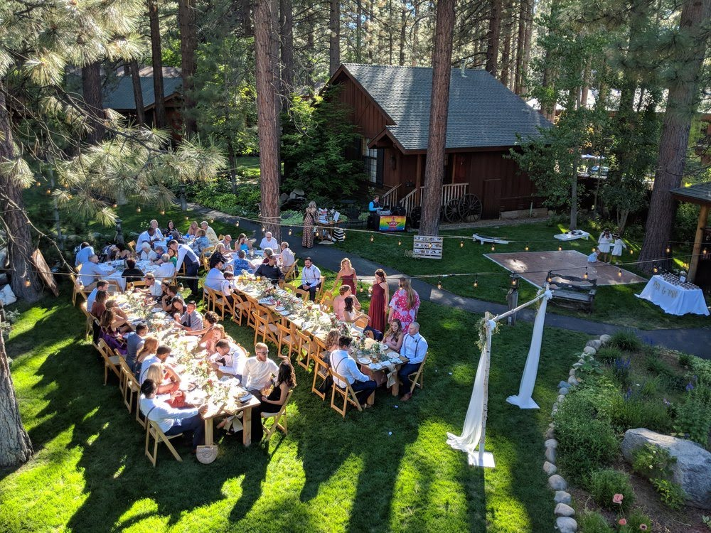 people eating at a wedding reception on the lawn at the black bear lodge, surrounded by pine trees