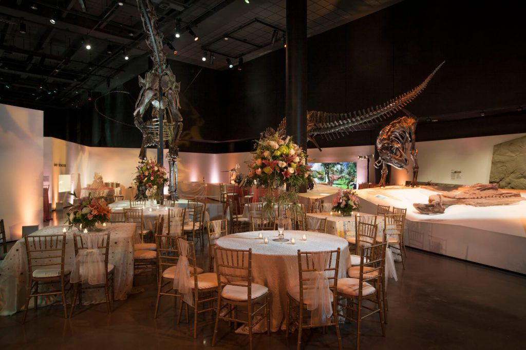 houston museum of natural science affordable wedding venue houston
