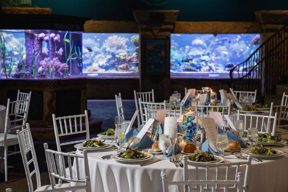 long island aquarium unique wedding venue nyc