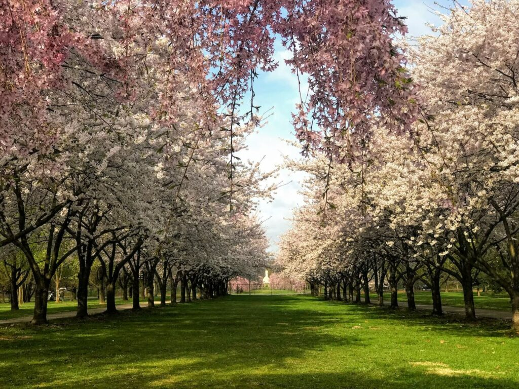 fairmount park horticulture center outdoor wedding venues philadelphia