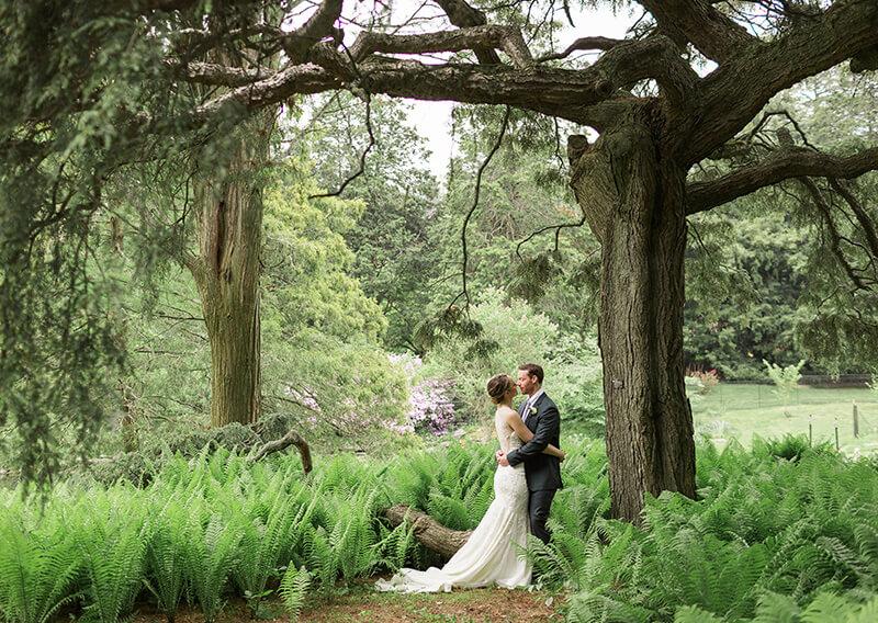 morris arboretum outdoor wedding venues philadelphia